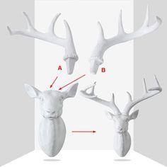 Deer antlers head / stag head mounted wall hanging - Six Things Stag Deer, Deer Antlers, White Deer Heads, Decorative Items, Bird, Lady, Animals, Deer Horns, Animales