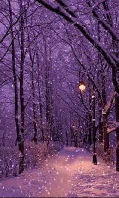 Beautiful Winter Scenes, Beautiful Moon, Winter Images, Winter Pictures, Christmas Scenes, Christmas Art, Animated Christmas Wallpaper, Winter Wonderland Lights, Animiertes Gif