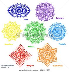 Isolated Set of beautiful ornamental 7 chakras by Transia Design, via Shutterstock