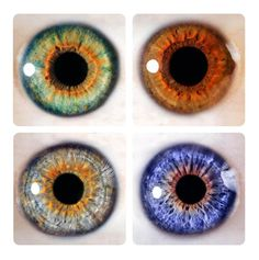 Macro Human Eyes by Anemone