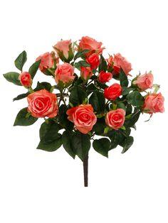 Coral Peach Rose Bush | Coral Wedding Flowers | Afloral.com
