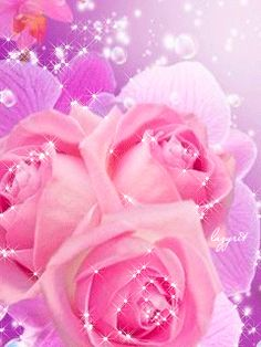 Gentle pink roses and orchids