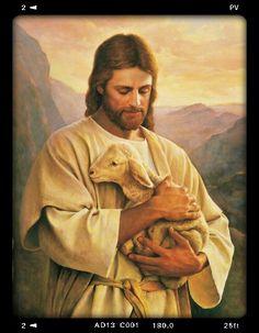 Sou tua ovelha Senhor...me protege e me guia!Eu te amo Jesus!!!!