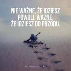 """""""Nie ważne, że idziesz powoli, ważne że idziesz do przodu"""". #rozwój #motywacja #sukces #inspiracja #sentencje #rosnijwsile #aforyzmy #quotes #cytaty Poetry Quotes, Words Quotes, Wise Words, Life Quotes, Love Is Comic, Great Life, Life Motivation, Self Improvement, Picture Quotes"""
