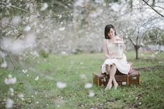 cherry blossom engagement photography by neiyo