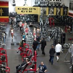 The Mecca. The first gym for the most famous franchise in the nation, is my dream as a weightlifter to visit Gold's Gym, Barbell Squat, Venice California, Big Legs, Gym Quote, Best Gym, Sport 2, Gym Design, Health Club