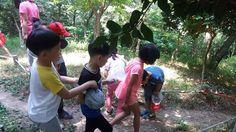 목포상동초등학교 숲 체험 행사