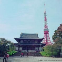 東京タワーと増上寺  女ゴコロ×通販