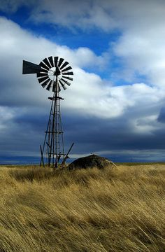 'Tilting at windmills' Matthew Lacey Tilting At Windmills, Old Windmills, Farm Windmill, Country Scenes, Water Tower, Old Barns, Le Moulin, Pretty Pictures, Barn Pictures