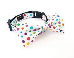 Rainbow_Dot_Bow_Tie_Dog_Collar_www.BigWags.com_1.png (549×435)