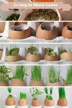 Original Easter decoration: eggs in grass - Ideas Jardinería - Dekoration Diy Osterschmuck, Easter Egg Crafts, Diy Easter Decorations, Coloring Easter Eggs, Egg Coloring, Egg Decorating, Diy Crafts For Kids, Craft Ideas, Project Ideas