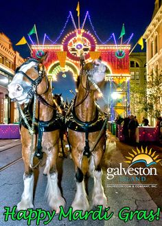 More than 250,000 people attend Mardi Gras! Galveston each year to experience the party of a lifetime. Call (888)939-8680 to reserve your accommodations at one of the Island's quality hotels or inns and plan to have the time of your life!