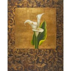 Calla Lily with Arabesque I Canvas Art - Patricia Pinto (22 x 28)