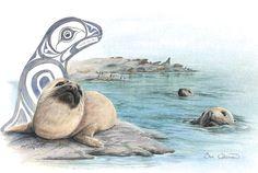 Sea Lion Pup-  Sue Coleman