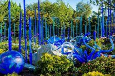 Dales garden in cobalt blue...amazing!!