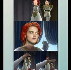 I love the Shrek reference