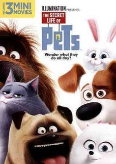 The secret life of pets / Illumination Entertainment ; written by Brian Lynch, Cinco Paul, Ken Daurio ; directed by Chris Renaud, Yarrow Cheney.