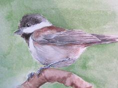 Chickadee Watercolor Painting OSWOA SongBird Art by KetturahsArt,