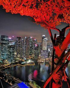 Singapore from up and above  #singapore #singaporelife #singaporeair #singaporefood  #marinabaysands #singaporeinsta #singaporestyle #singaporetrip #singaporecouple #singaporetourism #singaporephotographer #singaporecity  #singaporeig  #singaporeart #singaporetravel #singaporeblogger #singaporeskyline #cityskyline #citylights #citybreak #cityofdreams #cityvibes #exploresg #discoversingapore #wordcaptures #singaporenbeyond #visitsingapore #sgarchitecture Singapore Art, Visit Singapore, Singapore Travel, Dream City, City Break, City Lights, Marina Bay Sands, Tourism, Skyline