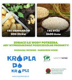 Sprawdź, ile wody potrzeba aby wyprodukować ryż i ziemniaki. Cantaloupe, Fruit, Food, Eten, Meals, Diet