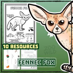Fennec Fox -- 10 Resources -- Coloring Pages, Reading & Activities