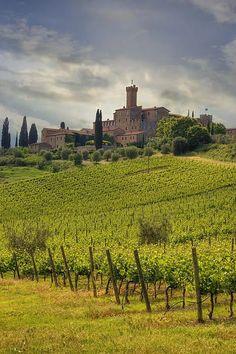 Castello di Poggio alle Mura(Castello Banfi), Montalcino (Siena), Tuscany, Italy #travel