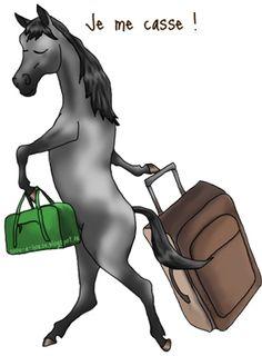 Changer son cheval de pension : les conseils pour que tout se passe bien.  http://soon-a-horse.blogspot.fr/2015/02/changer-votre-cheval-de-pension-conseils.html