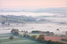 Pastel Morning