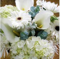 $115  8 bouquets