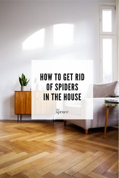 Often an unwelcome house guest, spiders can actually be beneficial for getting rid of insects. But, if you're squeamish about them, here are several ways to get rid of spiders in your home. Get Rid Of Spiders, House Spider, Bug Off, Bugs, Organizing, Butterflies, Life Hacks, Insects, Remedies