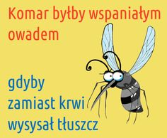 Polish Memes, Weekend Humor, Past Tens, Wtf Funny, Funny Moments, Motto, Haha, Funny Pictures, Funny Quotes