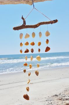 This wind chime is hand-crafted using driftwood and ark clam shells found along the beaches of North Carolina. It is strung with natural hemp