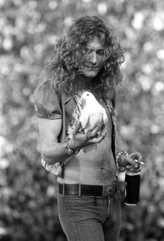 Robert Plant and a dove