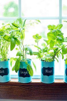 nice 10 Easy Ways to make Your Own Indoor Herb Garden