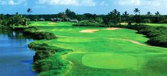 Here's a comprehensive list of Oahu golf courses including location and price ranges. Oahu golf courses range from luxury resort to municipal and military.