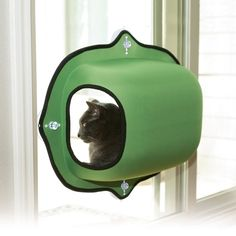 K&H Manufacturing EZ Mount Window Pod Kitty Sill - Window Perches & Cat Shelves at Hayneedle Little Pet Shop, Crazy Cat Lady, Crazy Cats, Cat Ideas, Cat Window Bed, Diy Pet, Chat Kawaii, Gatos Cat, Cat Shelves