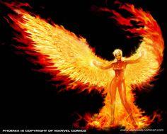 phoenix | like the phoenix i rise february 2 2011 Phoenix Images, Phoenix Art, Phoenix Rising, Phoenix Force, Jean Grey Phoenix, Dark Phoenix, Fantasy Creatures, Mythical Creatures, Mythological Creatures