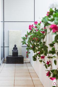 A zen balcony garden