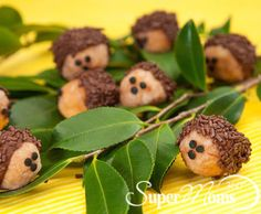 Super Moms 360° Article - Holiday and Seasonal Fun - Donut Hole Hedgehogs
