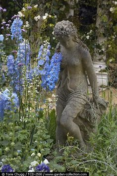 Statuary surrounded by Delphiniums.  I can't see her feet but it almost looks like she might be testing waters with her toes.  If so, she would look nice placed by a small pond or water feature.