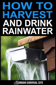 Harvesting rainwater is an ability any long-term prepper should have. However, there are more considerations than you might expect. #urbansurvivalsite #harvestrainwater #survivaltips #emergencysurvival #offgrid