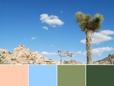 18 Color Palettes Inspired by National Parks: Joshua Tree National Park >> http://www.hgtv.com/design/decorating/color/national-park-color-palettes-pictures?soc=pinterest