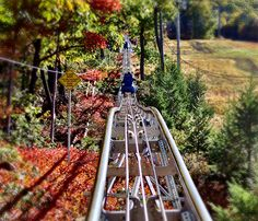 PA's only Mountain Coaster! 4500' of pure excitement! #MyCamelback