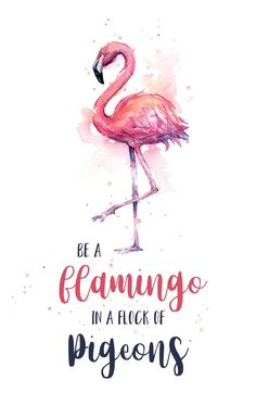 Be a Flamingo in a Flock of Pigeons Watercolor Typography Animals Mini Art Print by olechka Flamingo Art, Pink Flamingos, Birthday Words, Watercolor Typography, Trendy Wallpaper, Wallpaper Quotes, Wall Wallpaper, Cute Quotes, Framed Art Prints