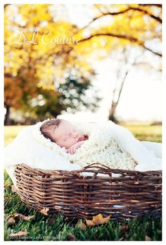 Google Image Result for http://daniellelavisphotography.com/blog/wp-content/uploads/2010/10/blogeditd20101017-Trethewey-outdoor-newborn-260.jpg