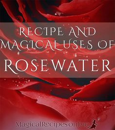 Ancient Formula Recipe: How to Make Rosewater - Magical Recipes Online Uses For Rose Water, Making Rose Water, Water Spells, Beauty Spells, Spiritual Bath, Witchcraft Spell Books, Elemental Magic, Bath Recipes, Kitchen Witchery