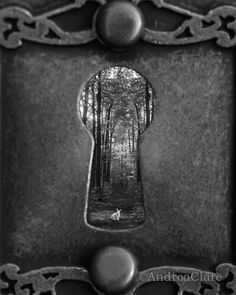 Einen guten Durchblick via @Barbara Ziegler ❦ open the door www.MiSha.at