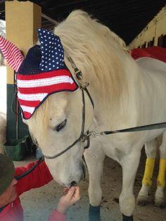 Born in the USA: base colore n. 19, rosso c19n e bianco, bordo n. 19, orecchie realizzate in cotone a stelle e striscie. In foto Fandango (Andaluso) del nostro amico Sergio #flyveil #flybonnet #horse #pony #cuffiettecavallo #cavallo #equestrian #equestrianstyle #equinestyle #horsewear #earbonnet #earnet #horsefashion #horselover #jumper #USA