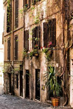 Italian Street - ID: 10358393 © Lynn  Andrews