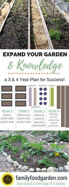 Vegetable Gardening: Expanding your garden and knowledge over the years #organicgardening #organicvegetablegarden